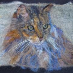 Gimme Shelter- Shelter Cat